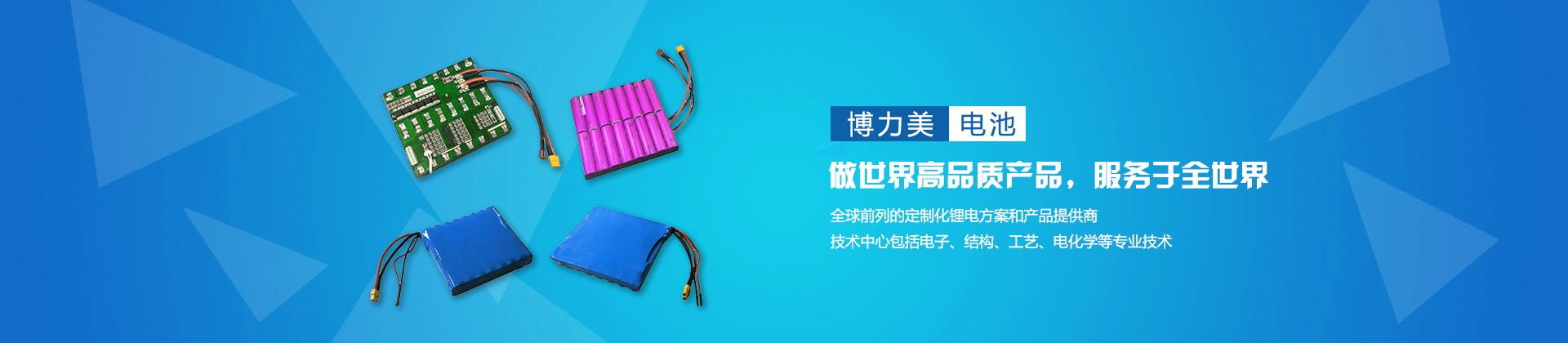 深圳市博力美电池有限公司